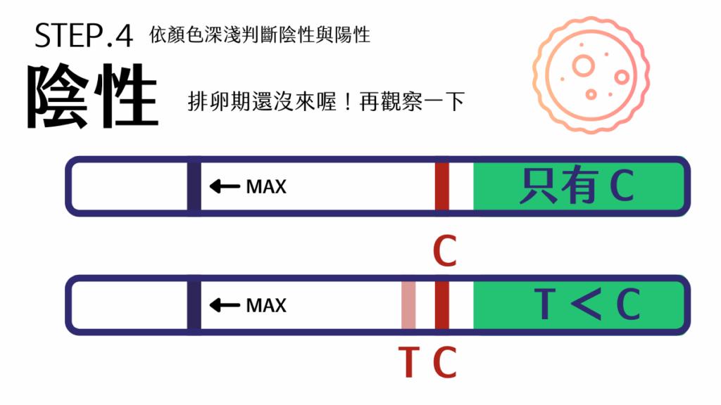 陽性:試紙呈現C=T、T>C,代表排卵期即將到來,受孕最佳時機為排卵期前2~3天,若有生育目標可把握這段時間。